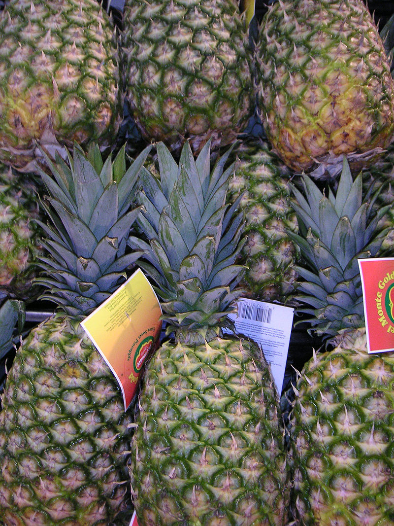Pineapple  - The final weeks of pregnancy - What will you be doing??